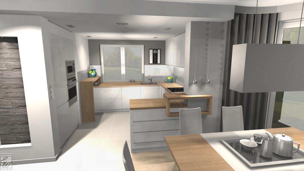 projekt domu 4d